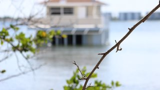 Owner still determined to build floating homes