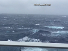 Hermine creates rough seas for cruise ships