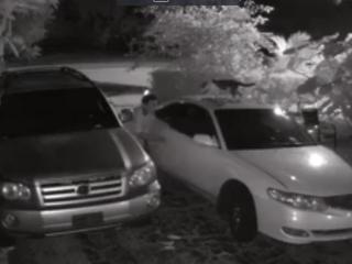 Boynton burglar swipes video games from car