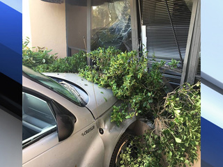 Woman crashes vehicle into building in Stuart
