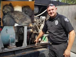 Police find 'intruders' inside generator