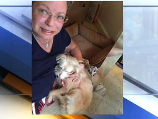 Boca Raton woman reunites with dog after 8 years