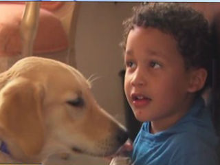 4-year-old from SC paired with local service dog
