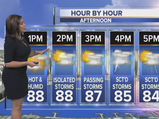 Hot, humid with more afternoon storms