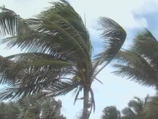 Winds picking up as Matthew gets closer to Vero
