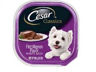 Choking risk prompts dog food recall