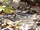 Postal carrier caught dumping mail in the woods