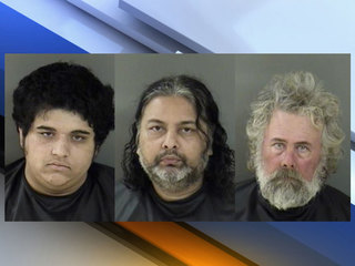 3 arrested in murder-for-hire plot in IR County
