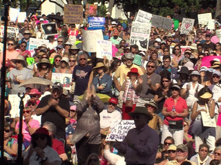 Thousands attend Women's March rally in WPB