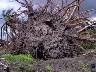 NWS surveys tornado damage in Northern PBC
