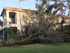 PHOTOS: Storms batter Palm Beach County