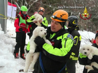 Puppies rescued days after Italian avalanche