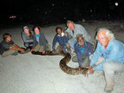 World-renowned snake catchers come to Florida