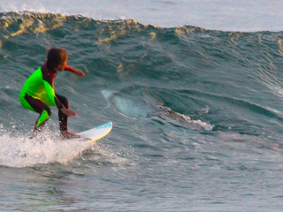 Young Aussie surfer photo bombed by shark