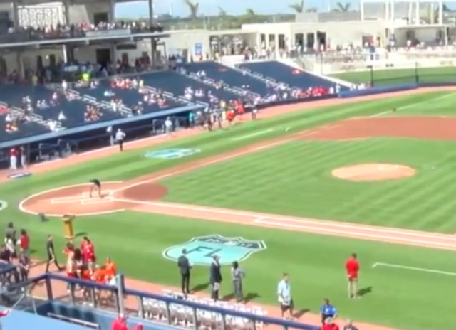 The Ballpark of the Palm Beaches open for business