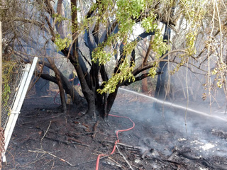 Firefighters work to contain SLC brush fire