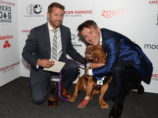 'Hero Dogs' of the U.S. honored in Palm Beach