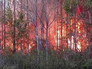 Ban on open burning in effect in Palm Beach Co.
