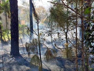 Handful of homes evacuated due to brush fire