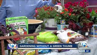 Spring gardening tips from Home Depot