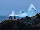 Huge iceberg towers over town