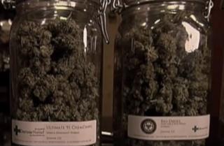 Medical marijuana dispensary to open in Vero