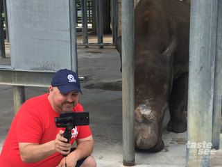 You can pet a rhino at Lion Country Safari