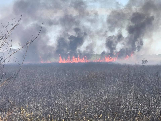 Wildfire reported in Shamong, Burlington County