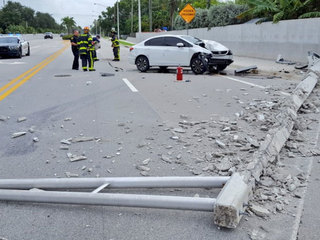 Spider cited as cause of Broward Co. crash