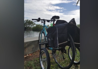 Bike stolen from woman with disability