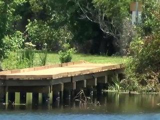 Stuart water quality project creates wetland