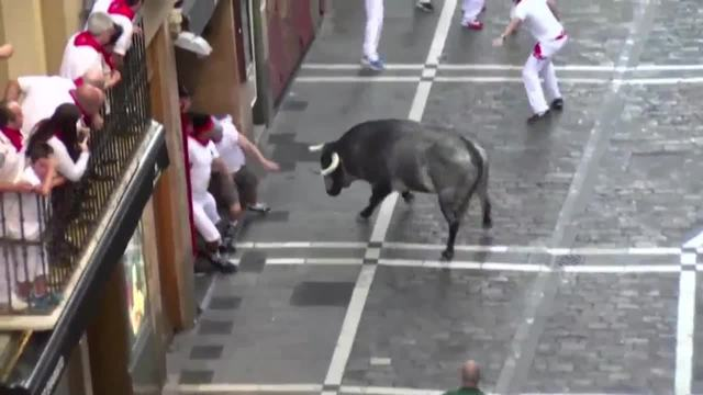 Irishman seriously injured in the Pamplona bull run festival