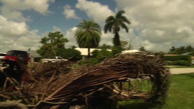 Dealing with yard debris before- after storm