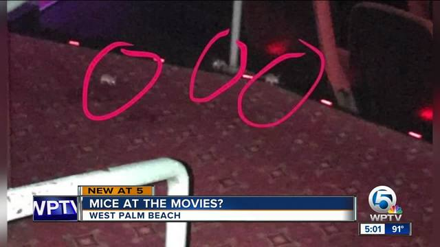 Complaints over rats at CityPlace movie theater