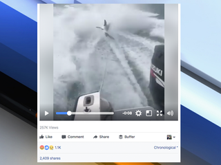 Video shows boaters dragging shark