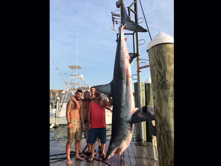 Fishing crew catches 926-pound shark in N.J.