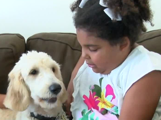 Young girl meets her soon to be service dog
