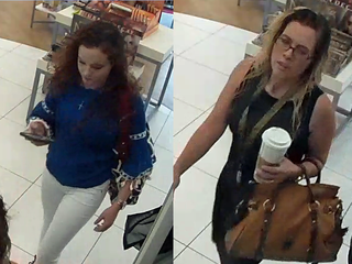 Police: Suspected cosmetics thieves sought