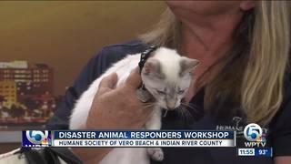 Pet disaster workshop in Vero Beach on Aug. 20