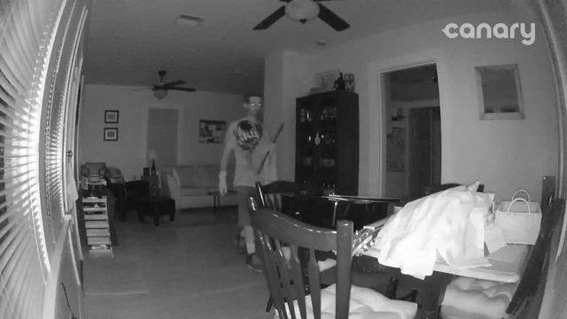 Burglary during Hurricane Irma