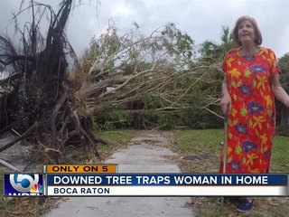 Community aids woman, 80, after tree blocks home