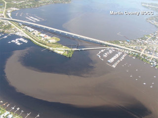 Aerial pictures show impact of Lake O discharges