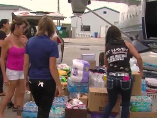 Pet supplies collected to be sent to Puerto Rico
