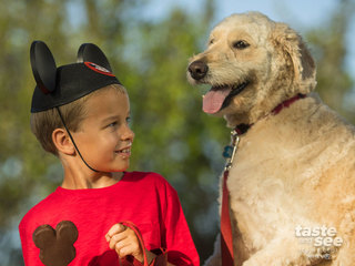 Select Walt Disney World hotels welcome dogs