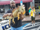 Florida police apprehend 'suspicious' iguana