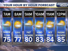 Partly sunny with highs in the low to mid 80s