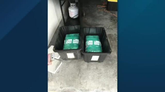 Florida couple finds 65 pounds of marijuana in Amazon package