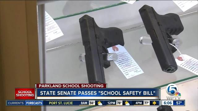 Florida Senate Approves Gun Control Package, OKs Arming Some School Personnel