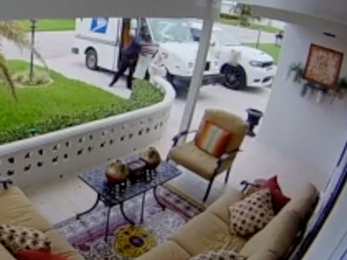 Camera catches postal worker throwing package