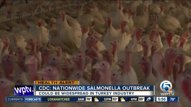 Salmonella outbreak tied to raw turkey